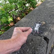 wallbreaker mouse