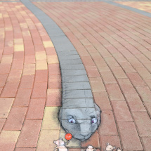 mouse crossing with grey snake