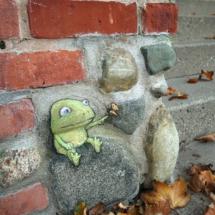 frog friend or food