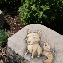lone wolf groupie (Detroit Zoo)