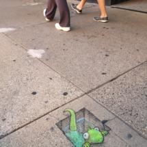 urban aquarium lizard